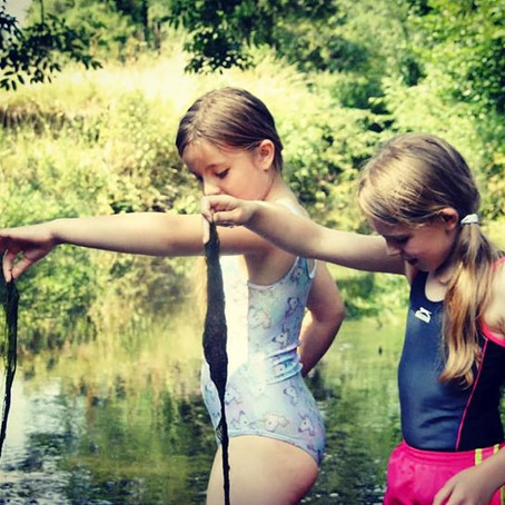 The River Eden - Running Wild