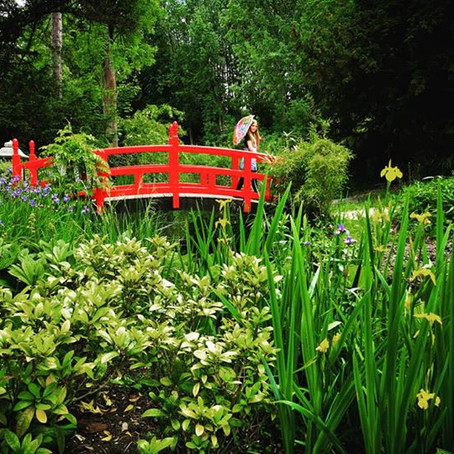 Gatton Park and Gardens