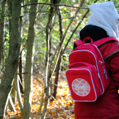 Tinyme Junior Backpack Combo Review
