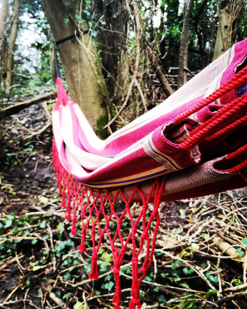 Tropliex hammock
