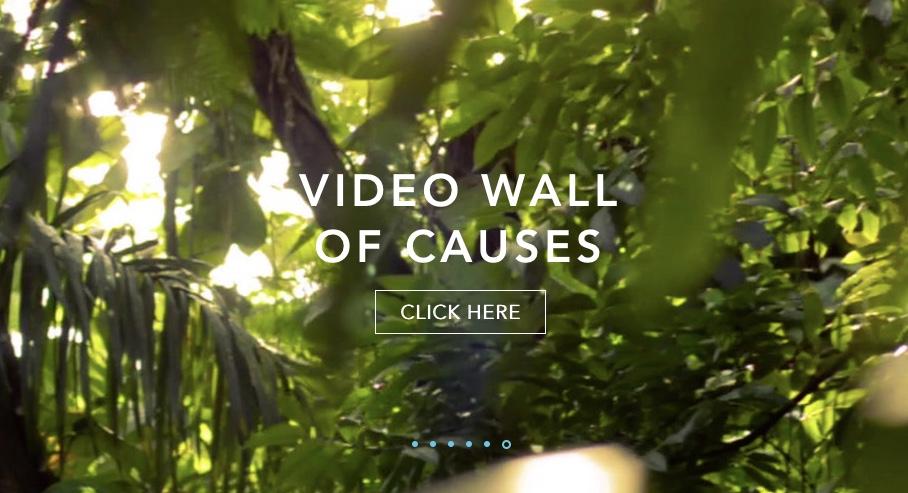 Inspiring Charity Videos