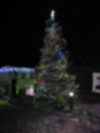 Xmas Tree 002.jpg