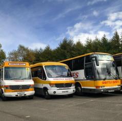 fb buses.jpg