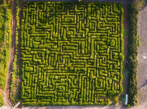 Sde Yaakov Maze