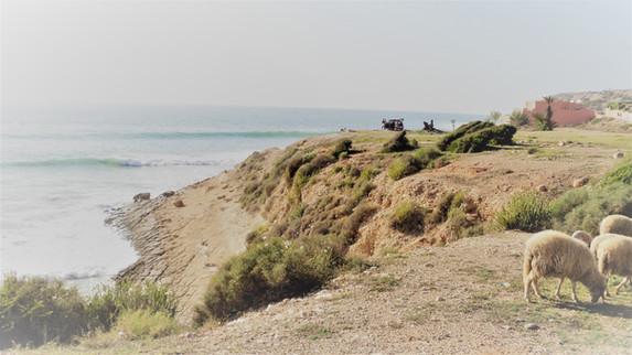 Surfing Around Portugal & Morocco