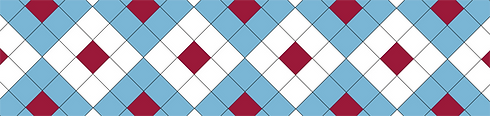 LAUDACIEUX-Pattern.png