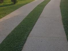 Entrée villa avec bandes roulantes en béton drainant gommé