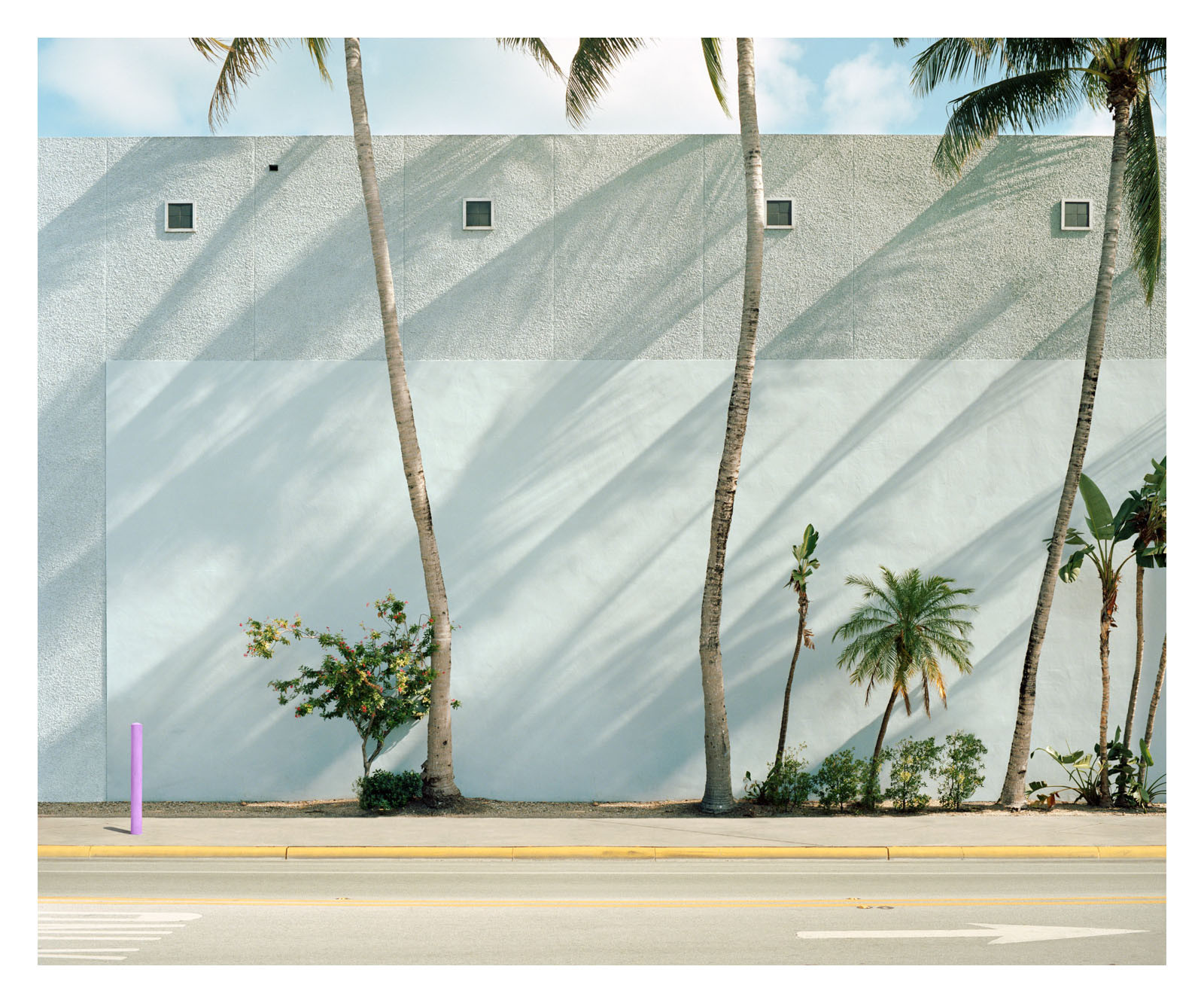 Green Wall Miami, 2019.jpg