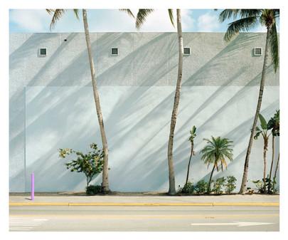 Green Wall, Miami, 2019