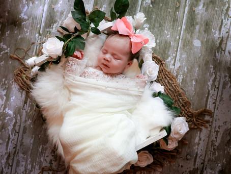 Newborn Photoshoot - Baby D  | Farnham | Hampshire | Surrey | Starspeckled Hearts Photography