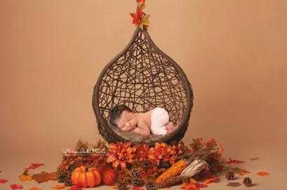 fall-hanging-basket-download.jpg