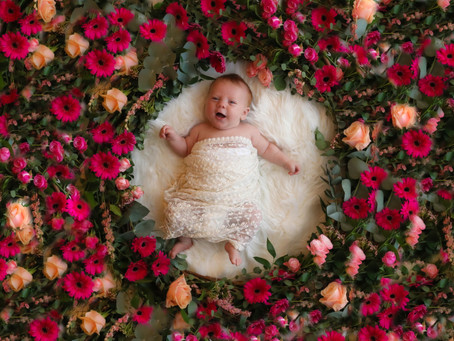 Newborn Photoshoot - Grace | Floral Themed | Hampshire | Surrey | Starspeckled Hearts Photography