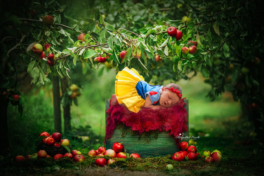 sleeping newborn wearing snow white dress, lying on a crate underneath an apple tree with lots of red apples on the ground around her