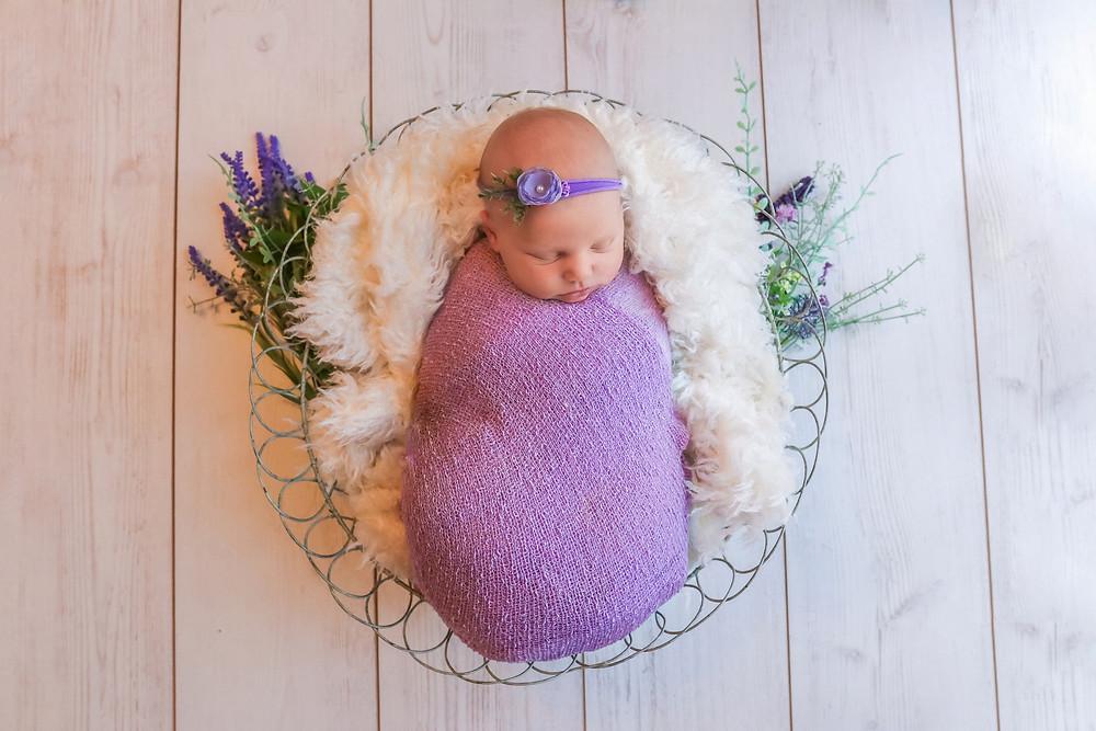 newborn girl in purple laying in basket