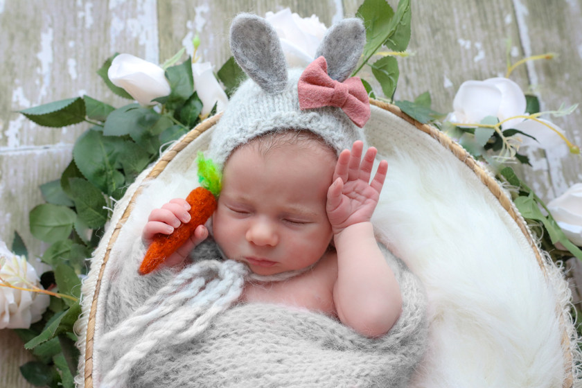 cute newborn girl wearing a grey knitted bunny bonnet and holding a felted carrot in one hand