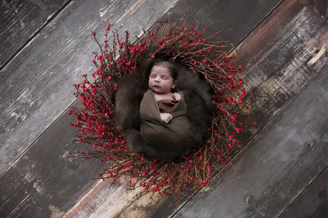 sleeping newborn boy lying in a nest of twigs with red berries