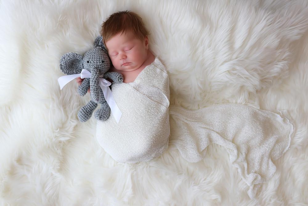 sleeping newborn girl in white cuddling elephant teddy