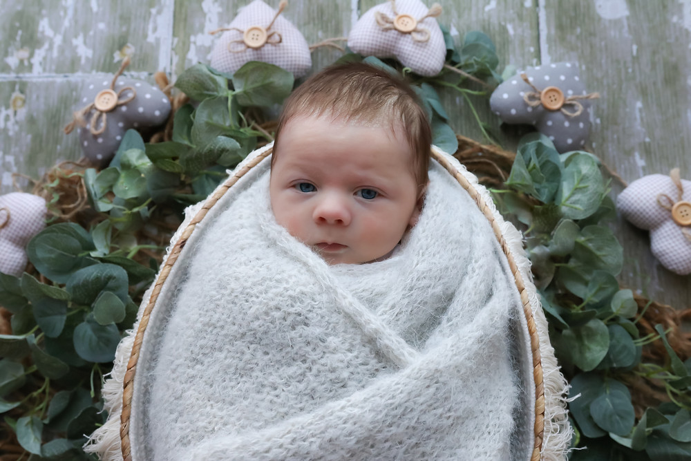 newborn with big blue eyes lying in basket surrounded by greenery