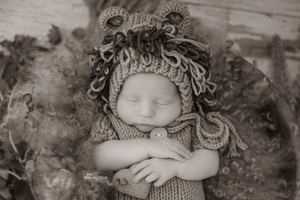 newborn baby boy wearing a lion bonnet, laying in a round basket stuffed with curly wool