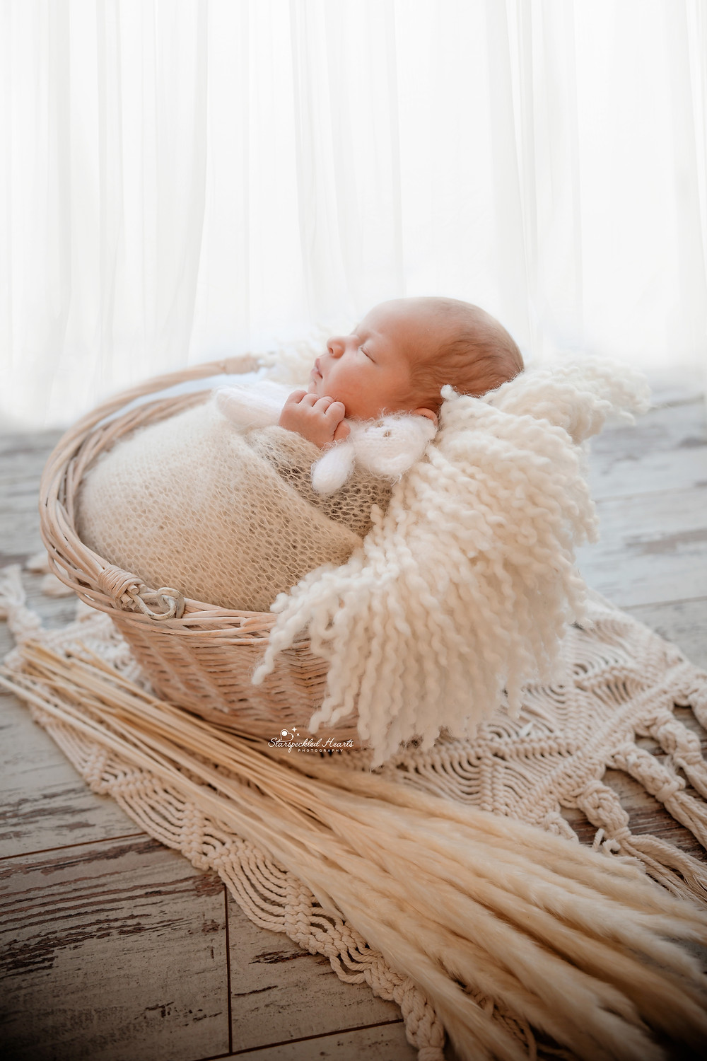 baby boy lying in a white wicker basket surrounded by pampas