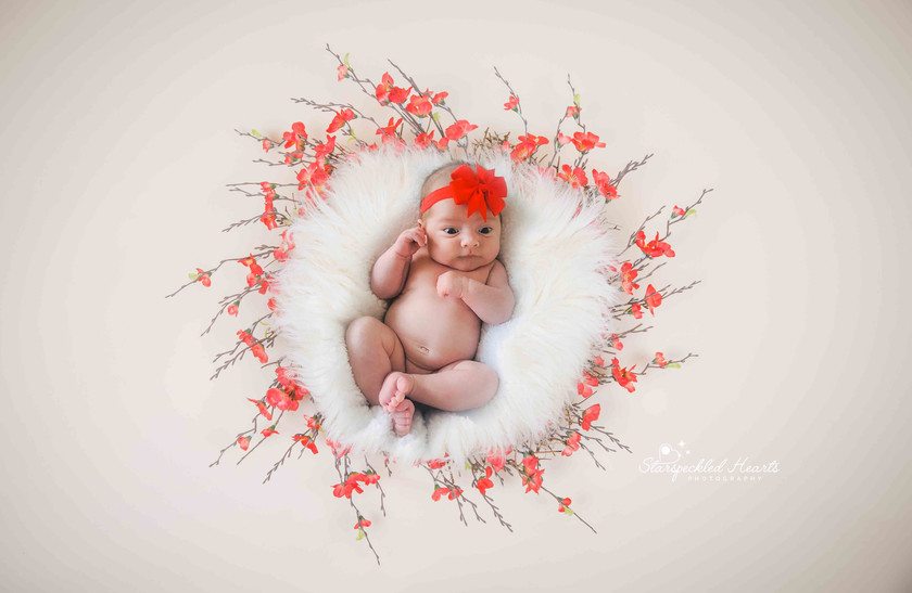 gorgeous baby girl wearing a red headband, laying in a basket surrounded by red flowers
