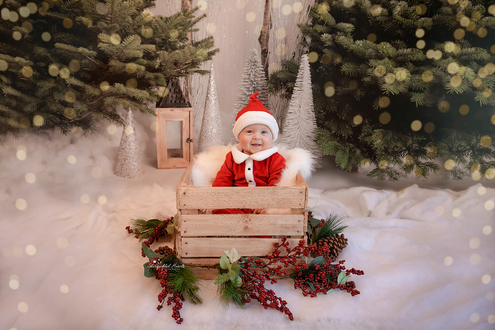 gorgeous baby boy wearing a santa outfit and hat, sitting in a wooden basket surrounded by red berries and greenery