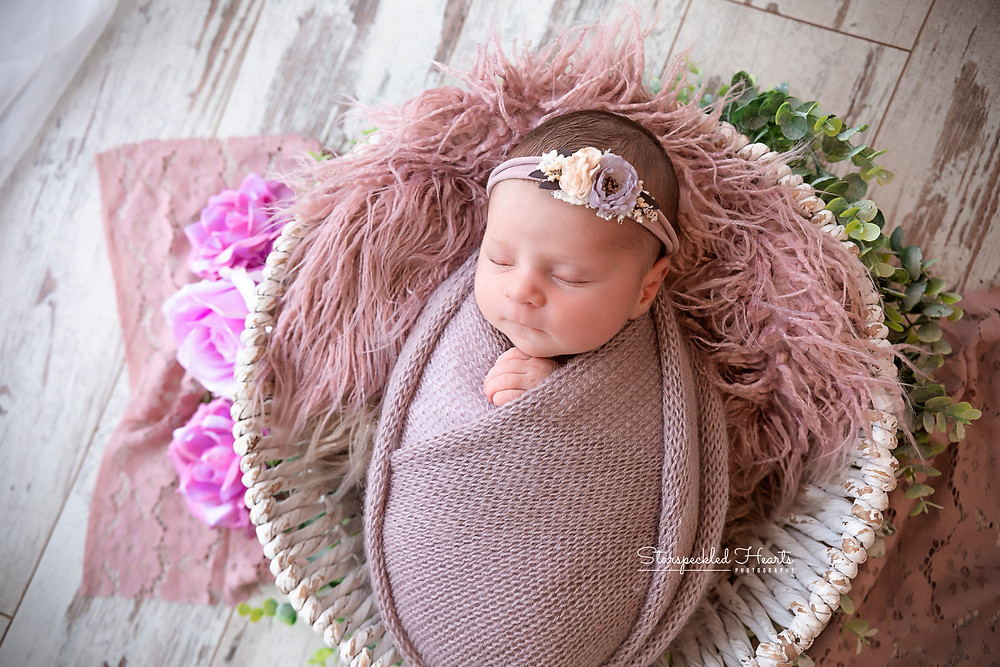 newborn girl swaddled in lilac, lying in a white wicker basket for her newborn photography session in caversham