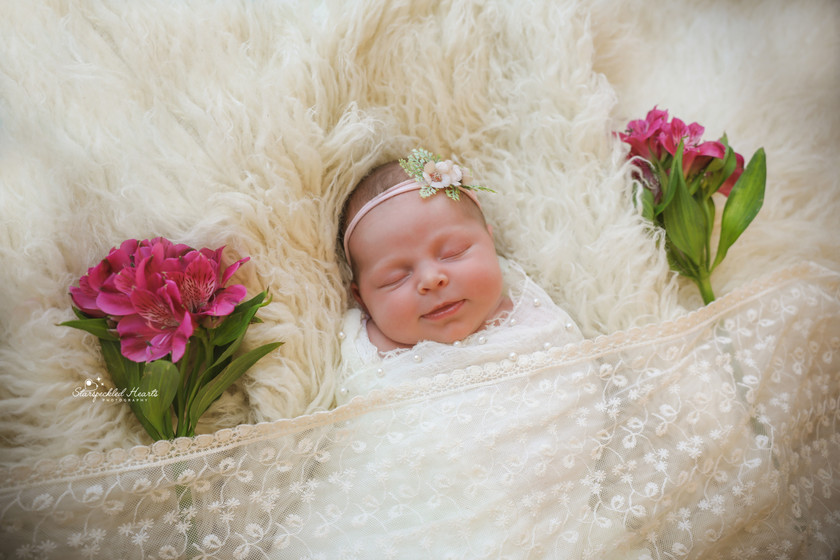 sleepy newborn baby girl, lying on a white fluffy rug with two bunches of pink flowers to either side of her