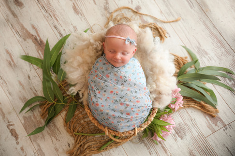 gorgeous baby girl wearing blue lace wrap and floral headband, lying in a bowl surrounded by pink flowers