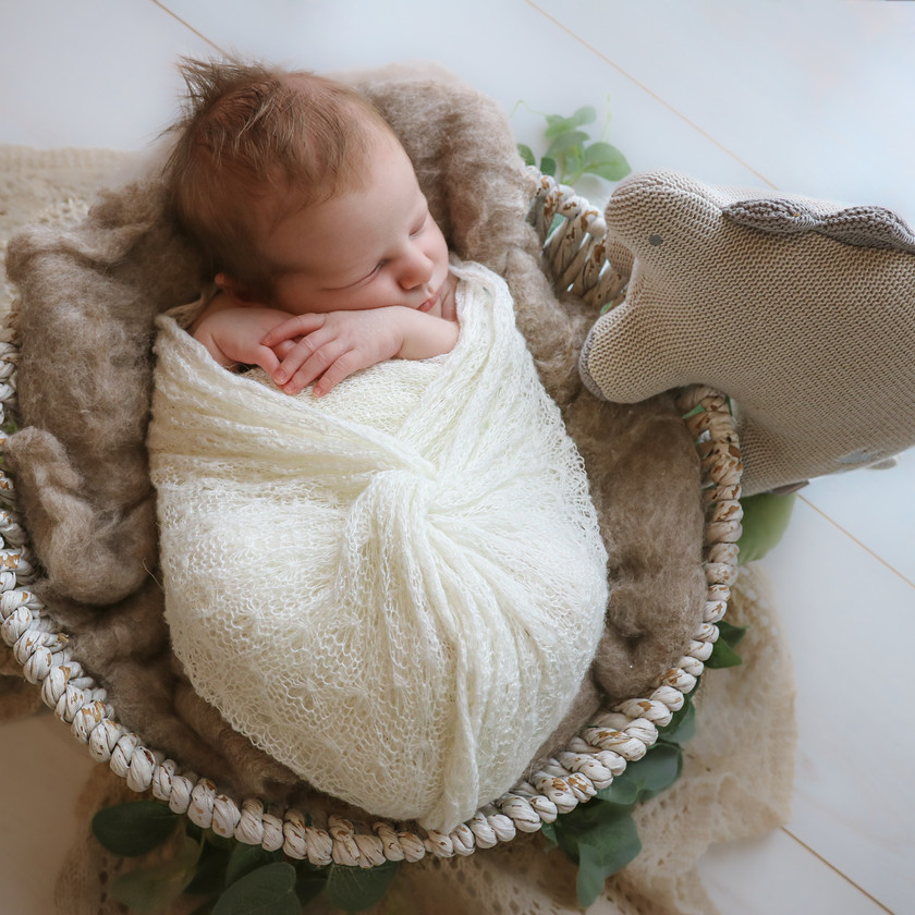 newborn wearing white lying in basket with dinosaur teddy