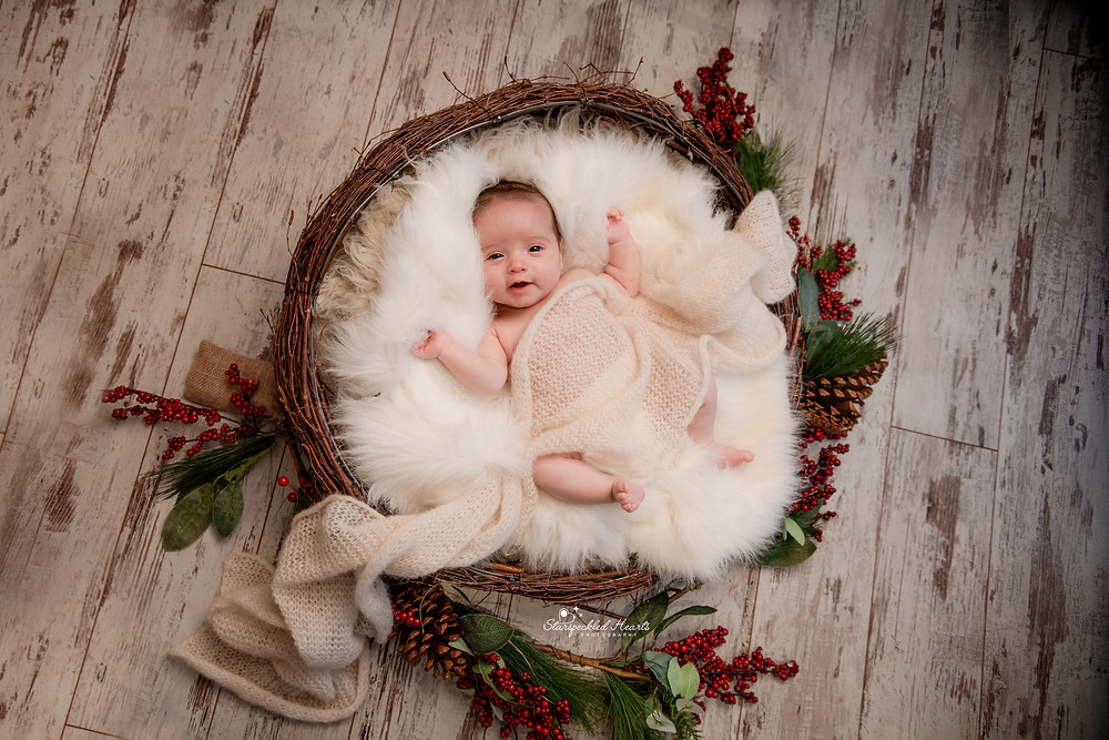 adorable sleeping baby girl covered with a white knit wrap, lying in a brown nest of twigs surrounded by red berries, greenery and pinecones