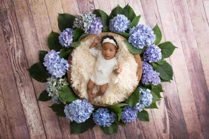 sweet baby girl laying in a basket surrounded by large purple flowers for her little smiler milestone session with starspeckled hearts photography in hampshire