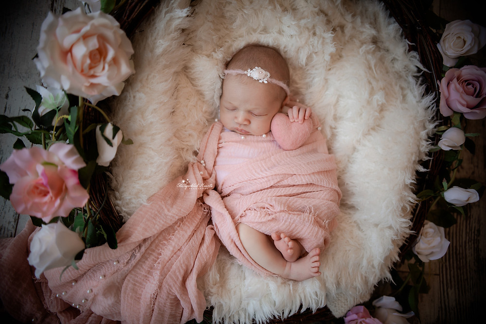 sleeping newborn baby girl wrapped in pink, lying in a wicker basket surrounded by roses