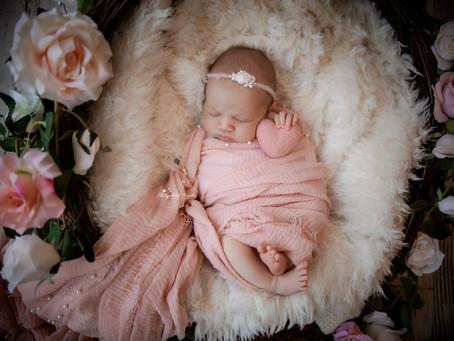 Newborn Baby Photographer Dorking | Epsom | Leatherhead | Staines | Pirbright | Hampshire | Surrey