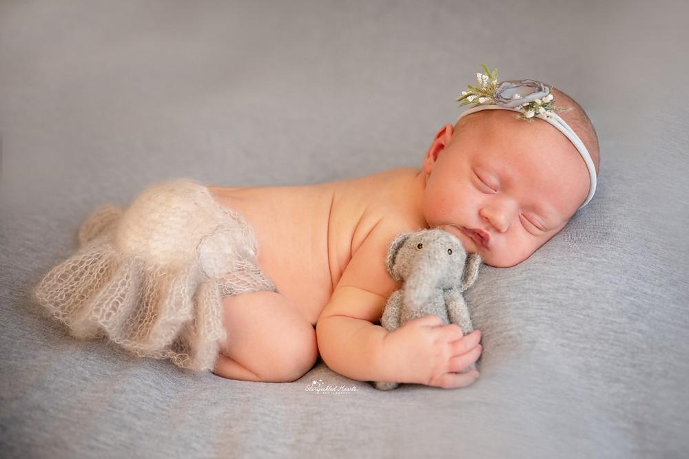 sleeping newborn baby girl lying on a grey backdrop wearing a grey headband cuddling a grey elephant teddy