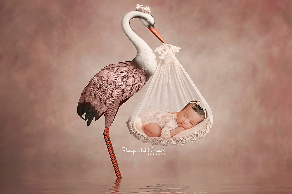 sleeping newborn girl carried by a stork for her newborn photography session with starspeckled hearts photography in aldershot, hampshire