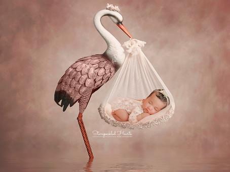 Newborn Baby Photographer in Aldershot | Hampshire | Starspeckled Hearts Photography