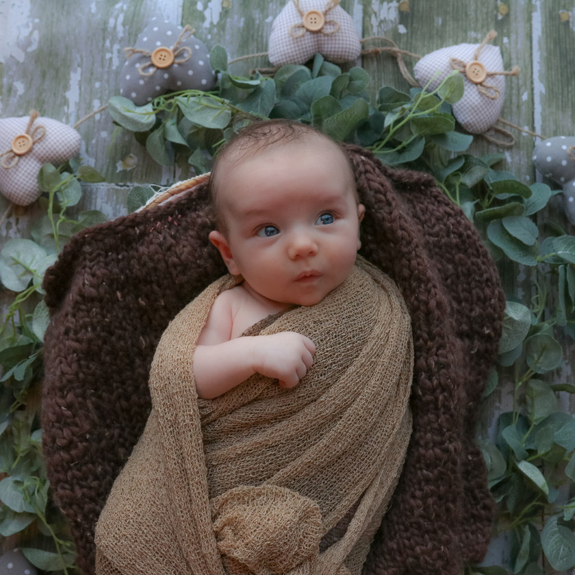 awake newborn brown wrap laying in bowl