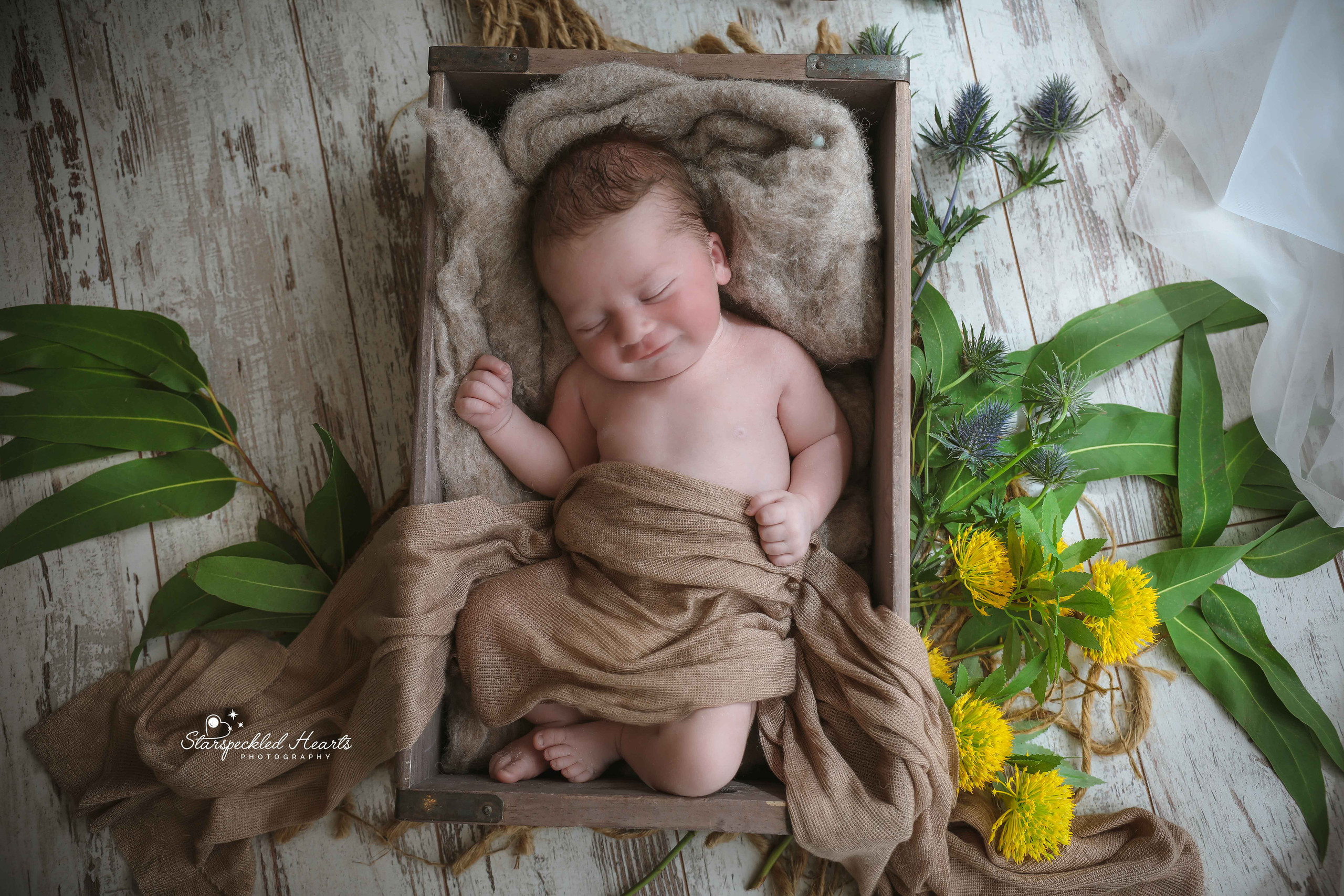 sleeping newborn baby boy laying in a brown wooden crate surrounded by greenery