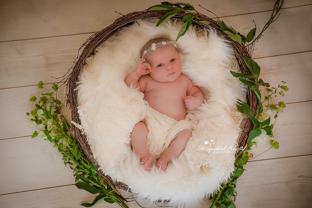 newborn baby girl lying in a wicker basket, surrounded by greenery