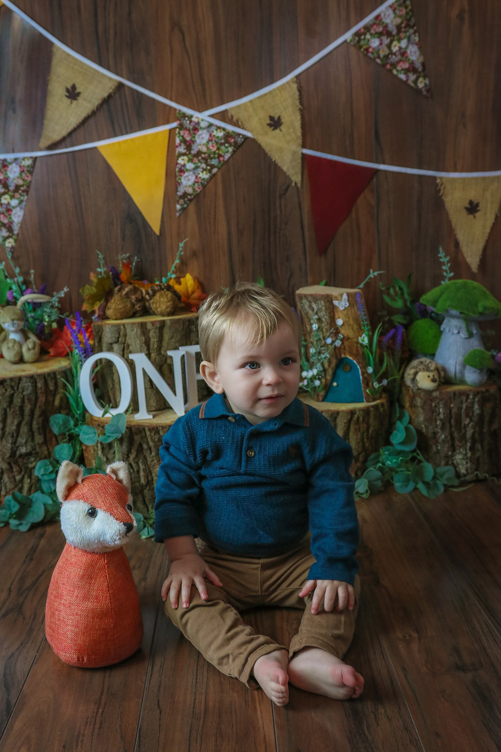 woodland themed photoshoot little boy and fox