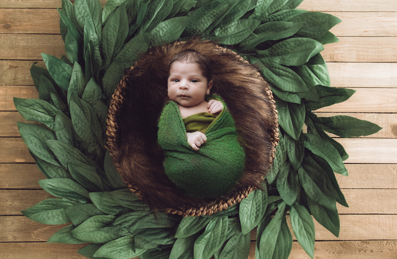 newborn boy lying in a bowl surrounded by greenery