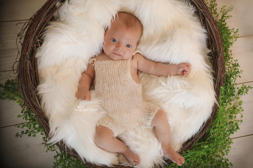 gorgeous baby boy lying in a wicker basket
