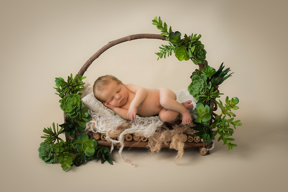 newborn laying on wooden bed covered with green succulents