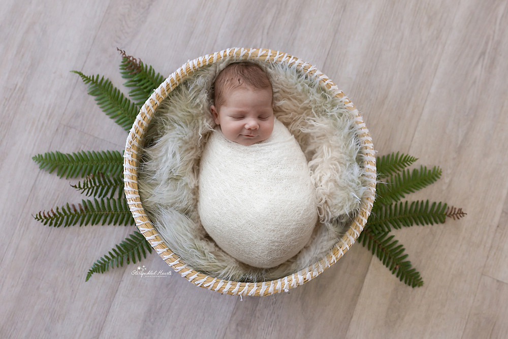 sleeping newborn baby boy swaddled lying in a basket surrounded by fern leaves