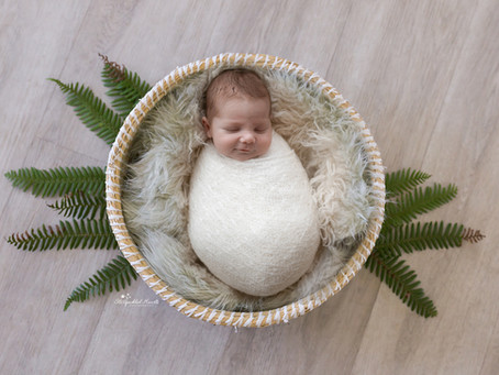 Newborn Baby Photographer Hampshire | Fleet | Camberley | Farnham | Bracknell | Surrey | Berkshire