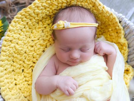 Newborn Photoshoot in Farnham | Ash | Hampshire | Surrey  | Starspeckled Hearts Photography