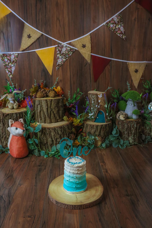woodland theme photoshoot cake smash setup