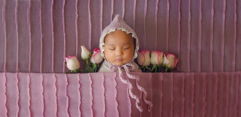 NDB_pink_roses_backdrop_Niwa_extended ve