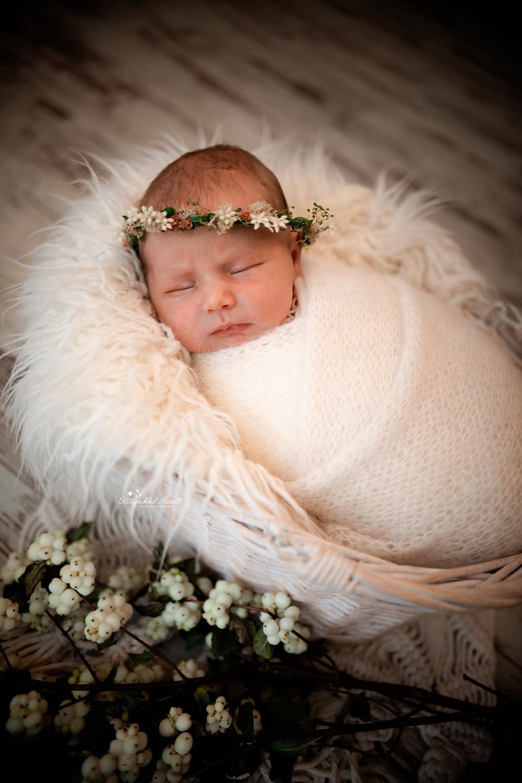 newborn photographer aldershot hampshire